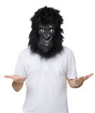 Gorilla man. Man with a gorilla mask, isolated on a white background, in an explain position Stock Image