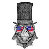 Gorilla, monkey, ape Frightful animal wearing cylinder top hat and glasses with usa flag United states of America flag. Vintage style drawing Animal wearing Stock Image