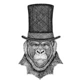 Gorilla, monkey, ape Frightful animal wearing cylinder top hat. Vintage style drawing Animal wearing cylinder top hat Royalty Free Stock Photography