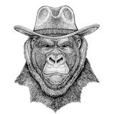 Gorilla, monkey, ape Frightful animal Wild animal wearing cowboy hat Wild west animal Cowboy animal T-shirt, poster. Wild animal wearing cowboy hat Wild west Stock Photography