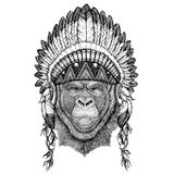 Gorilla, monkey, ape Frightful animal Wild animal wearing indian hat Headdress with feathers Boho ethnic image Tribal. Wild animal wearing indian hat Headdress Stock Image
