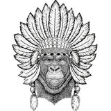 Gorilla, monkey, ape Frightful animal Wild animal wearing indiat hat with feathers Boho style vintage engraving. Wild animal wearing indiat hat with feathers Stock Photo