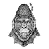 Gorilla, monkey, ape Frightful animal Wild animal wearing tirol hat Oktoberfest autumn festival Beer fest illustration. Wild animal wearing tirol hat Oktoberfest Stock Image
