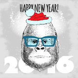 Gorilla monkey Hipster with blue glasses and Christmas hat. Royalty Free Stock Images