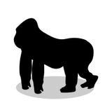 Gorilla monkey primate black silhouette animal. Vector Illustrator Stock Image