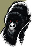 Gorilla mother head stock illustration