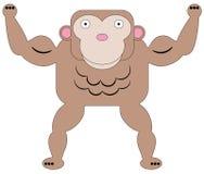 Gorilla muscle Stock Photos