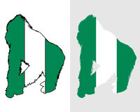 Gorilla Nigeria Royalty Free Stock Image