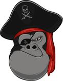 Gorilla pirate Stock Images