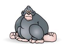Gorilla posteriore dell'argento Immagini Stock