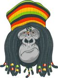 Gorilla Rastafarian Royalty Free Stock Images