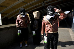 Gorilla run Stock Photography