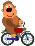 Gorilla's bike Stock Image
