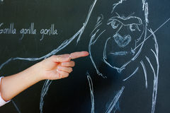 Gorilla Sketch On Chalkboard Royalty Free Stock Photo