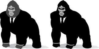 Gorilla in suit Stock Photo