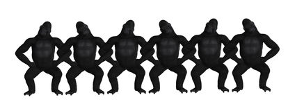 Gorilla Teamwork Arm In Arm Illustration Royalty Free Stock Photo