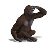 Gorilla thinking Royalty Free Stock Photography