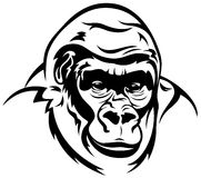 Gorilla vector Royalty Free Stock Photos