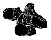 Gorilla Vector Illustration Photos stock
