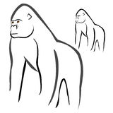 Gorilla. Vector illustration : Gorilla sketch on a white background Royalty Free Stock Photo