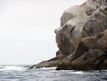 Gorilla& x27; s面孔岩石在Arraial做Cabo,里约热内卢 免版税图库摄影