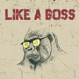 Gorilla in the yellow sunglasses. Urban label. Gorilla in the yellow sunglasses .Grunge effect.Typography design for t-shirts Stock Photos