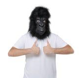 Gorillamann Lizenzfreies Stockbild