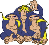 Gorillas with bananas Stock Photo