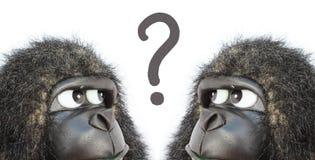 Gorillas thinking Stock Photos