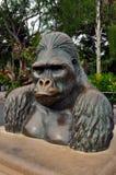 Gorillastaty på den San Diego zoo Arkivbild