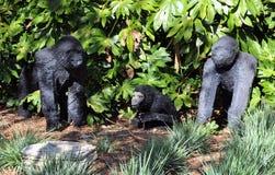 Gorille Fotografia Stock Libera da Diritti