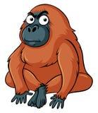 Gorille avec le visage sérieux illustration stock