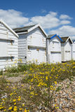 Goring Beach Huts. Beach huts at Goring, Sussex, UK Royalty Free Stock Images