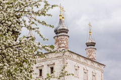 Goritsky monastery, Russia Stock Photography
