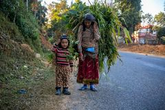 Nepali Farmer returning home royalty free stock images