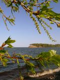 The Gorki sea in the spring Royalty Free Stock Photo