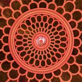 ceiling in The Great Synagogue, a historical building in Gorlitz, Germany. royalty free stock images