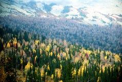 Gornaya Shoriya4. Shot of forests and mountains autumm Royalty Free Stock Photos
