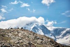 Gornergrat Zermatt, Svizzera, alpi svizzere Fotografia Stock Libera da Diritti