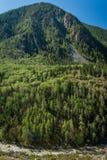 Gorny Altai Στοκ Εικόνες