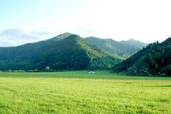 Gorny Altai Imagen de archivo libre de regalías