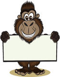 Gorrilla holding sign Stock Photography