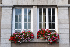 Gorron - Windows and flowers Stock Image