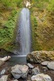 Gorton Creek Falls Stock Image