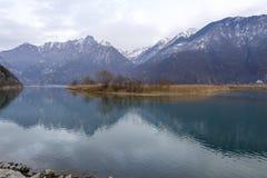 Gorve delle canne sul lago nell'inverno, Italia Mezzola Fotografie Stock