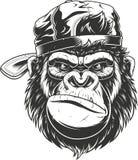 Goryl głowa w baseball nakrętce ilustracja wektor