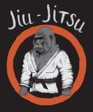 Goryl jest jiu-jitsu wojownikiem royalty ilustracja