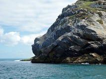 Goryl skała Fotografia Stock