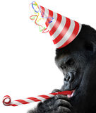 Goryla partyjny zwierzę z pasiastym urodzinowym kapeluszem i noisemaker uzbrajać w rogi Zdjęcie Stock