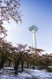 Goryokaku tower Hakodate. Royalty Free Stock Photography